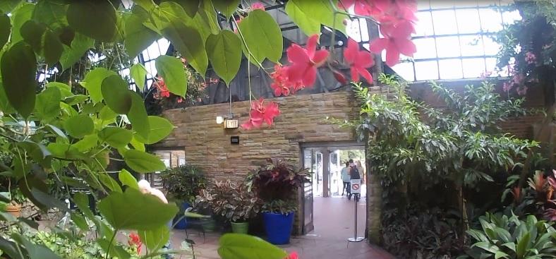 chicago-ogrod-botaniczny.jpg